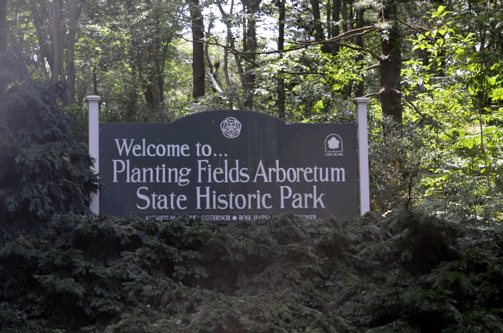 Planting Fields Arboretum pictures (1/6)